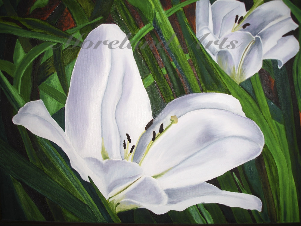 painting-white-lilies-2
